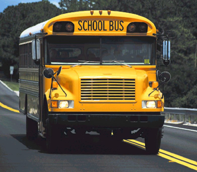 columbus city schools transportation phone number